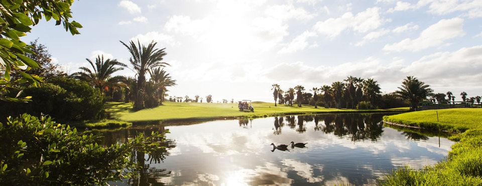 region-golfdelsur-webtenerife